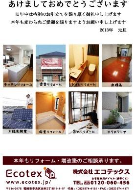 nennga_2013.jpg